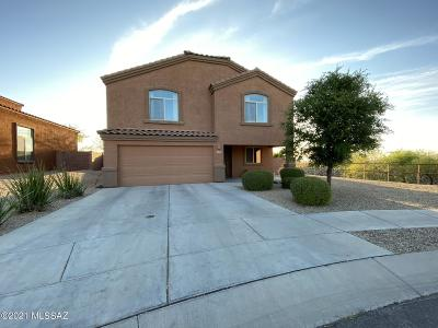 Vail Single Family Home Active Contingent: 230 S Princess Erica Drive