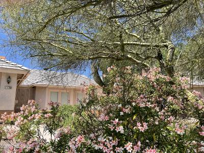 Oro Valley Single Family Home Active Contingent: 1138 W Masters Circle