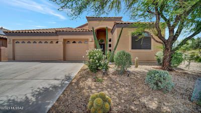 Sahuarita Single Family Home Active Contingent: 378 N Old Camp Lane