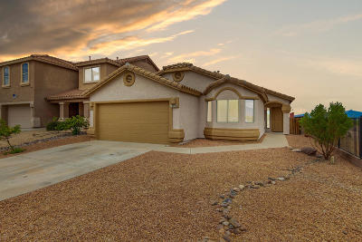 Vail Single Family Home Active Contingent: 10780 S Piety Hill Drive