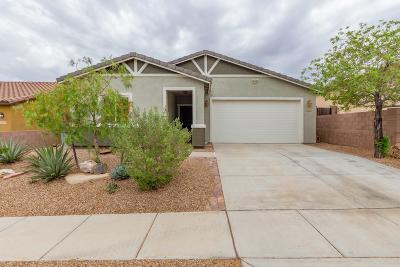 Vail Single Family Home Active Contingent: 17049 S Mesa Shadows Drive