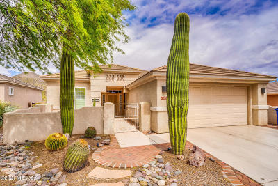 Marana Single Family Home For Sale: 13650 N Holly Grape Drive