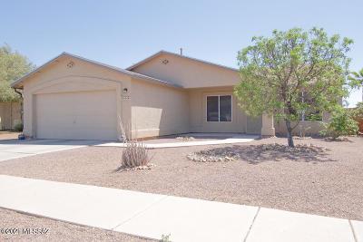 Tucson Single Family Home For Sale: 9994 E Depot Drive