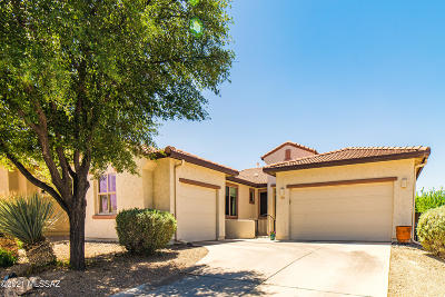 Marana Single Family Home Active Contingent: 12677 N Rye Drive
