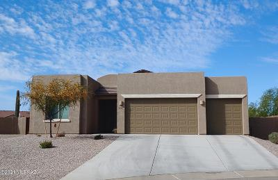 Vail Single Family Home For Sale: 9662 S Via Bandera