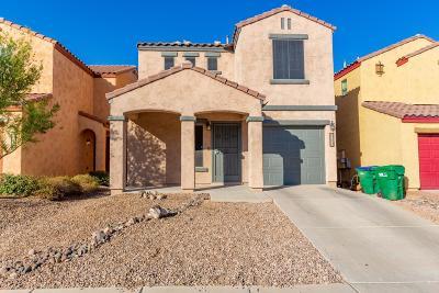 Sahuarita Single Family Home For Sale: 14331 S Camino El Galan