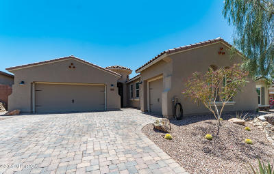 Marana Single Family Home Active Contingent: 7175 W Cactus Flower Pass
