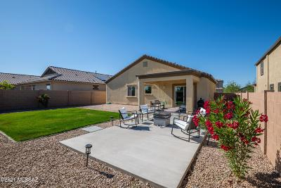Marana Single Family Home Active Contingent: 9153 W Old Agave Trail