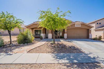 Vail Single Family Home For Sale: 10928 S Alley Mountain Drive