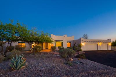 Tucson Single Family Home For Sale: 4209 S Melpomene Way