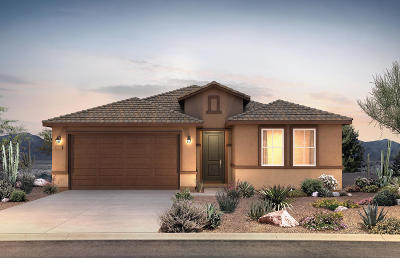 Tucson Single Family Home For Sale: 7900 S Expedition Drive