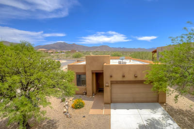 Vail Single Family Home For Sale: 336 E Desert Haven Place