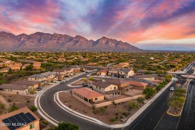 Tucson Single Family Home For Sale: 12873 N Oakhurst Loop