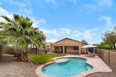 Marana Single Family Home Active Contingent: 12581 N Skoda Drive