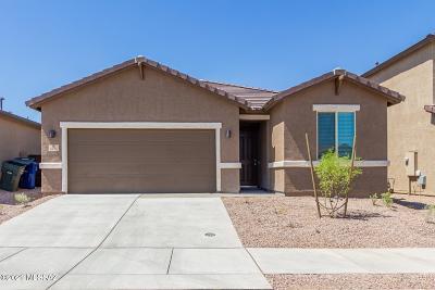 Tucson Single Family Home For Sale: 6574 E Via Arroyo Azul