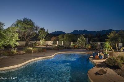Tucson Single Family Home For Sale: 8081 E Corte Del Joven