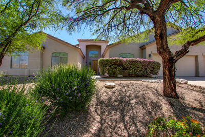 Tucson Single Family Home For Sale: 788 N Arizona Estates Road