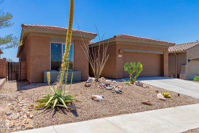Marana Single Family Home For Sale: 12550 N Gentle Rain Drive