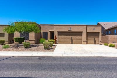 Marana Single Family Home For Sale: 12463 N Sunrise Shadow Drive