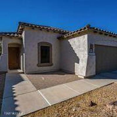 Sahuarita Single Family Home For Sale: 14364 S Via Gualda