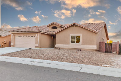 Sahuarita Single Family Home For Sale: 1011 E Providence Canyon Drive Drive