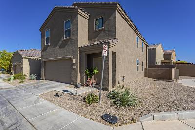 Tucson Single Family Home For Sale: 7643 W Placita Naranja
