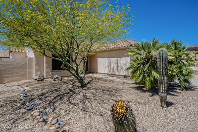 Tucson Single Family Home For Sale: 9845 N Moon Canyon Place