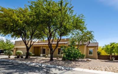 Vail Single Family Home For Sale: 9604 S Via Bandera