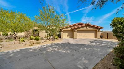 Oro Valley Single Family Home Active Contingent: 1597 W Copper Sky Drive