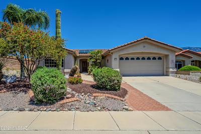 Oro Valley Single Family Home For Sale: 2101 E Bighorn Mountain Drive