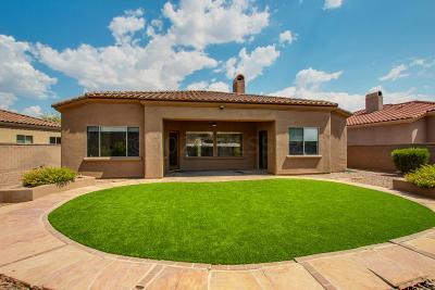 Tucson Single Family Home Active Contingent: 6375 N Via Jaspeada