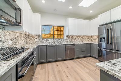 Tucson Single Family Home For Sale: 4230 Camino Ferreo