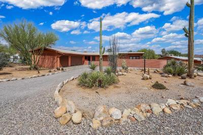 Tucson Single Family Home For Sale: 835 E Camino De Fray Marcos