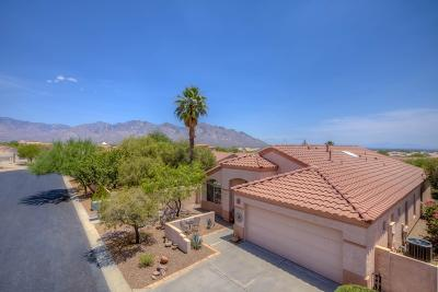 Oro Valley Single Family Home For Sale: 1511 W Sand Pebble Drive