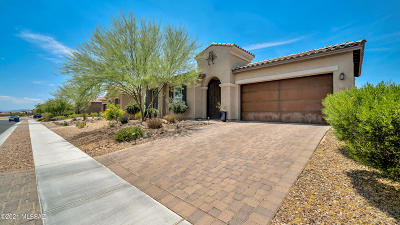 Oro Valley Single Family Home For Sale: 13655 N Meadowhawk Lane