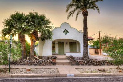 Tucson Single Family Home For Sale: 722 N 3rd Avenue
