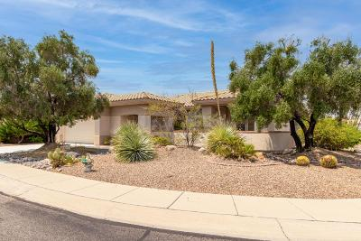 Oro Valley Single Family Home For Sale: 14725 N Desert Rock Drive
