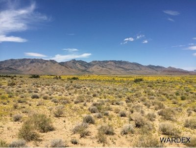 Kingman Residential Lots & Land For Sale: 33225140 Land