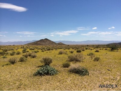 Kingman Residential Lots & Land For Sale: 33233004 Land