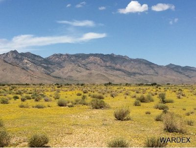 Kingman Residential Lots & Land For Sale: 33225143 Land