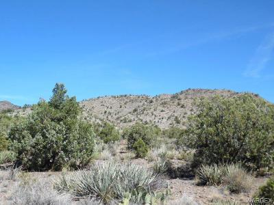 Kingman Residential Lots & Land For Sale: 0000 N Blake Ranch Road