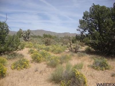 Residential Lots & Land For Sale: - 2634 Wagon Trail Rd