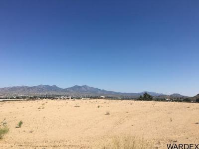 Kingman AZ Residential Lots & Land For Sale: $199,000