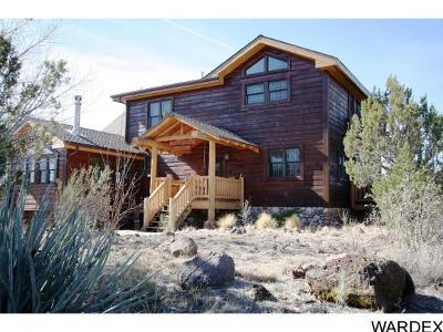 Kingman Single Family Home For Sale: 3595 N Willows Ranch Rd