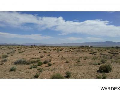 Kingman Residential Lots & Land For Sale: E. Grace Neal