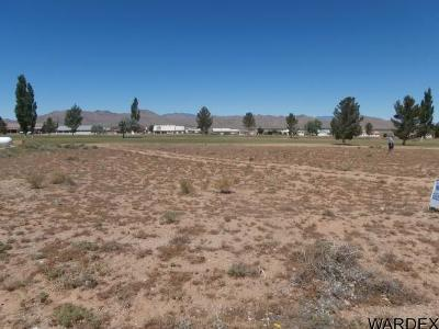 Kingman AZ Residential Lots & Land For Sale: $38,500