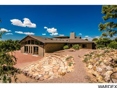 Kingman Single Family Home For Sale: 5576 E Blue Jay Rd