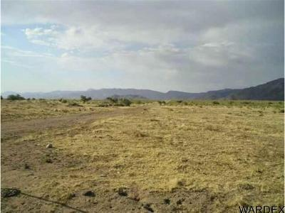 Kingman Residential Lots & Land For Sale: 027J N Randolph Road
