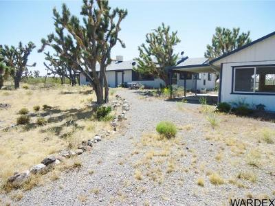 Dolan Springs Single Family Home For Sale: 17161 N Mesquite Rd