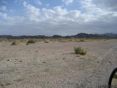Lake Havasu City Residential Lots & Land For Sale: 2255 Victoria Farms Rd
